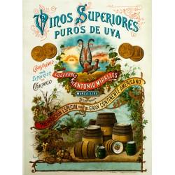 VINOS SUPERIORES PUROS DE UVA...PARA EL GRAN CONTINENTE AMERICANO