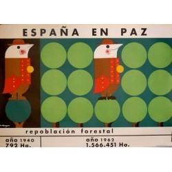 ESPAÑA EN PAZ REPOBLACIÓN FORESTAL