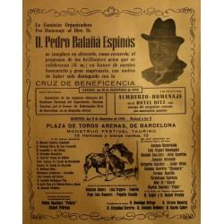HOMENAJE A D. PEDRO BALAÑA ESPINOS
