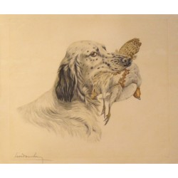 LEON DANCHIN. (English setter)