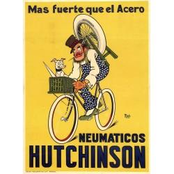 NEUMATICOS HUTCHINSON