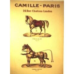 CAMILLE PARIS